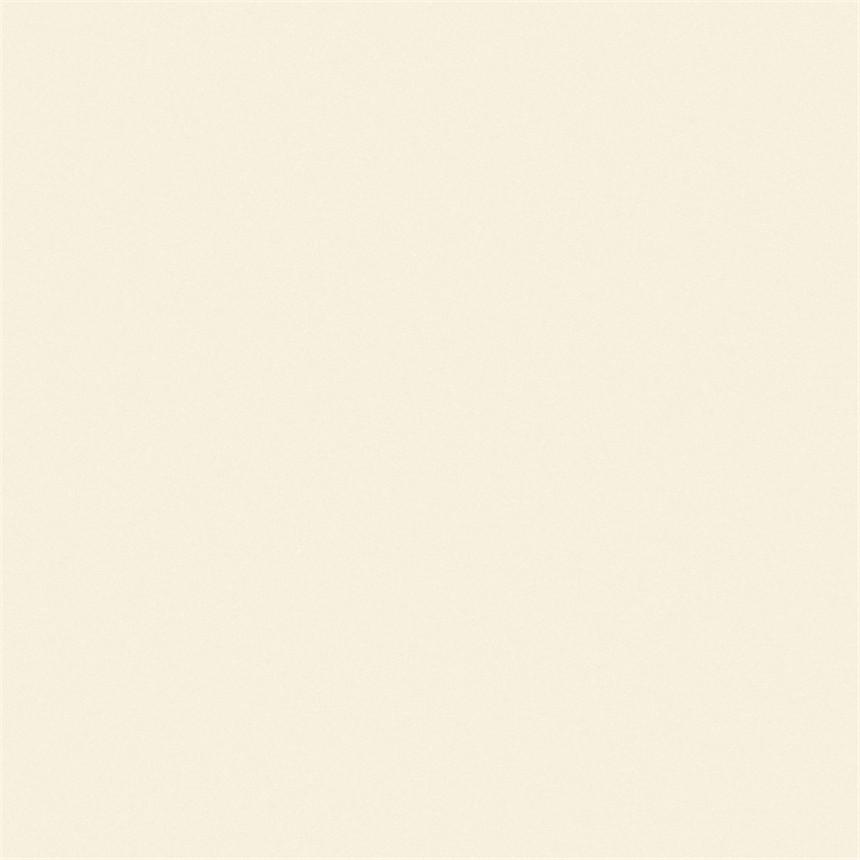 罗曼缔克瓷砖-RPC60101