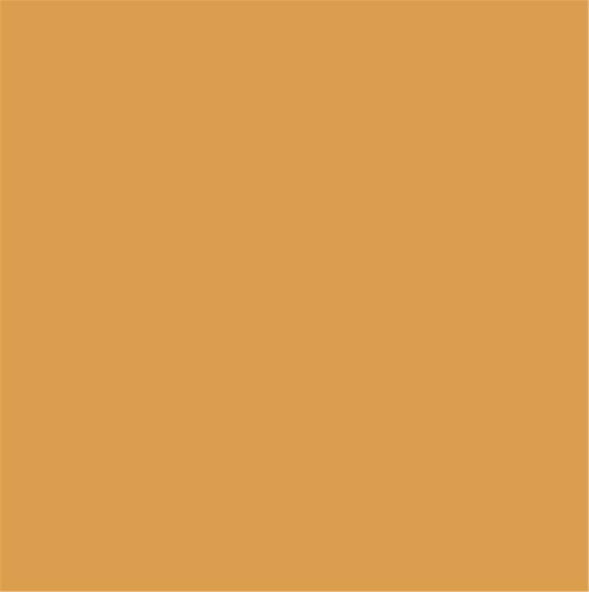 罗曼缔克瓷砖-RP603301